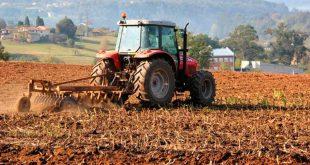 Sector agroindustrial condena decisión del gobierno de tomar 70 % de la producción